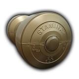 STAMINA 2x Plastic Dumbbell 3kg [ST-800-3CG] - Gold - Barbell / Dumbbell